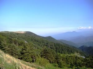 美ヶ原高原 松本市 ドライブ 絶景